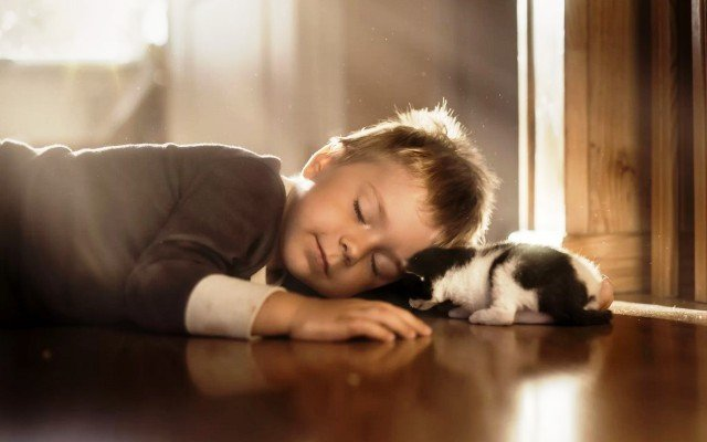 Видеть во сне маленького или новорожденного мальчика,сына видеть маленьким мальчиком,близнецов,двух мальчиков по соннику