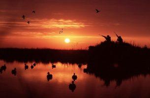 Изображения для статьи К чему снится Охота